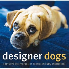 designer dogs book cover by author Caroline Coile